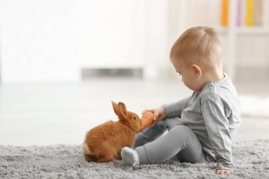 Cute little boy feeding rabbit with carrot while sitting on floor at home