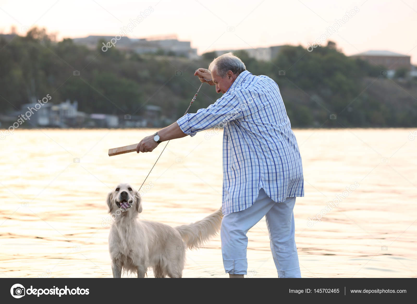 senior homme dressage de chien photographie belchonock 145702465. Black Bedroom Furniture Sets. Home Design Ideas
