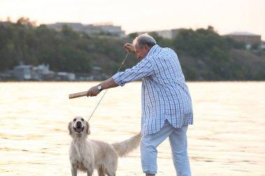 Senior man training dog