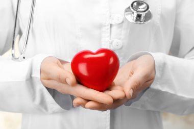 Doctor holding plastic heart