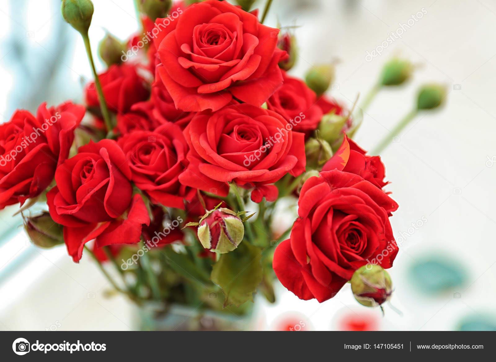 Beautiful Rose Flowers Stock Photo Belchonock 147105451