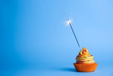 delicious cupcake with sparkler