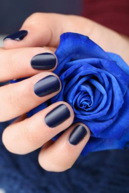 female hand with manicure holding rose
