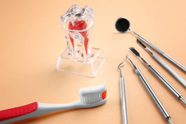 Toothbrush, dental instruments and plastic tooth