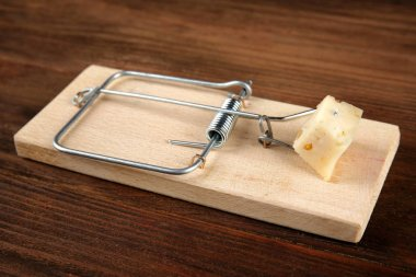 Mousetrap with cheese on wooden table