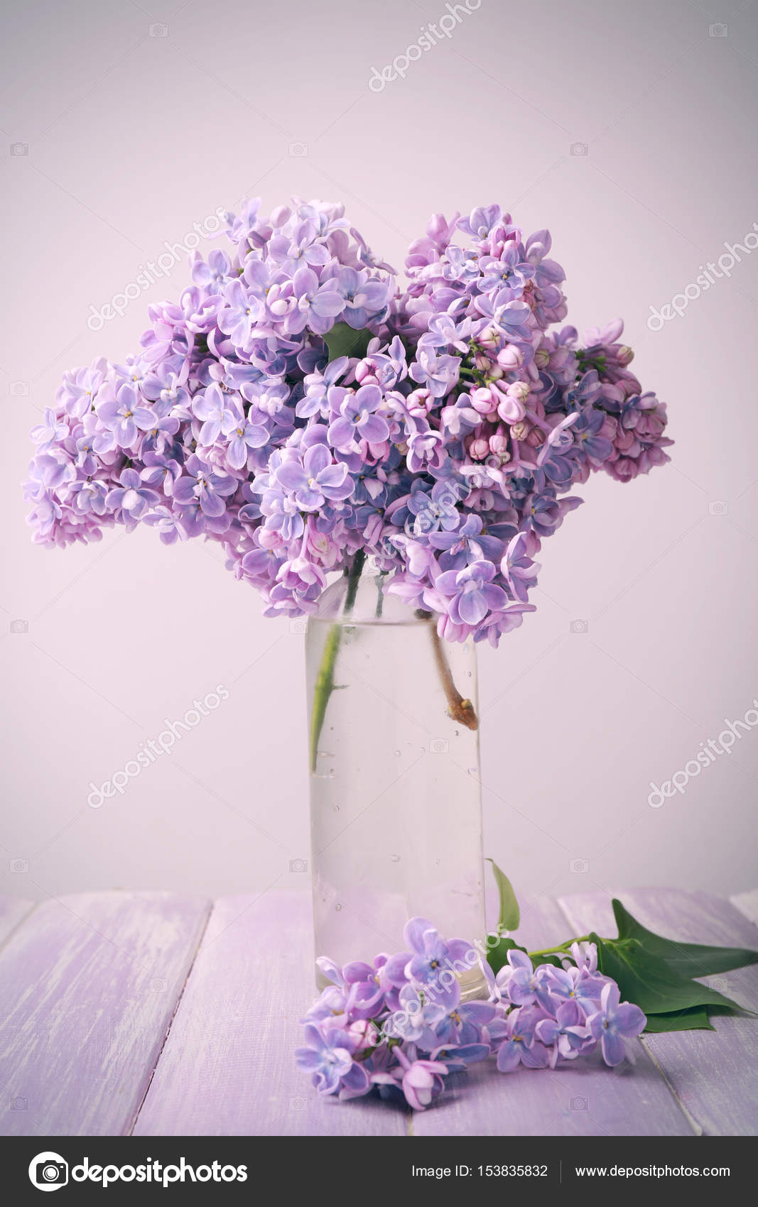 beautiful bouquet of lilac flowers — Stock Photo © belchonock #153835832