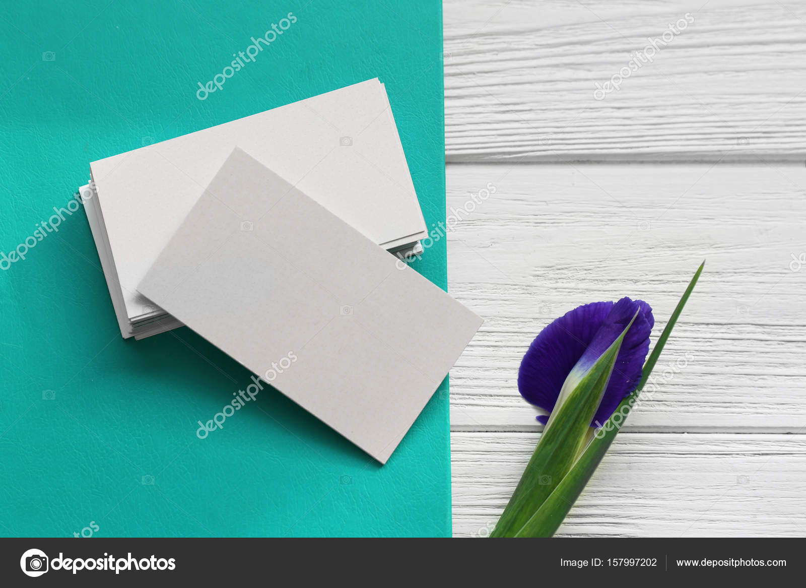 Business cards and iris flower — Stock Photo © belchonock #157997202