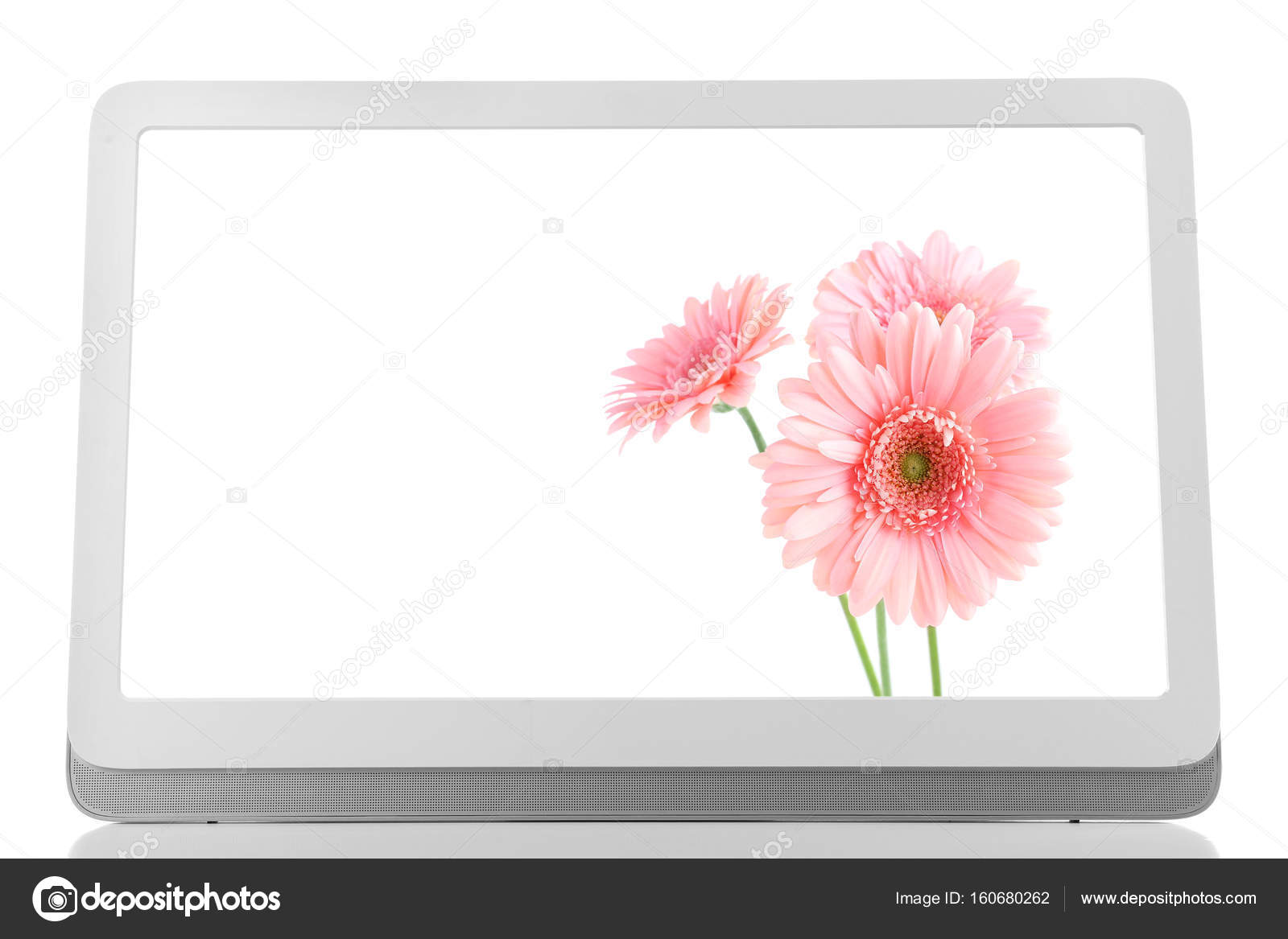 Descargar Fondos De Pantalla Para Pc Flores