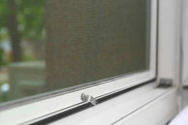 Window with mosquito screen indoors