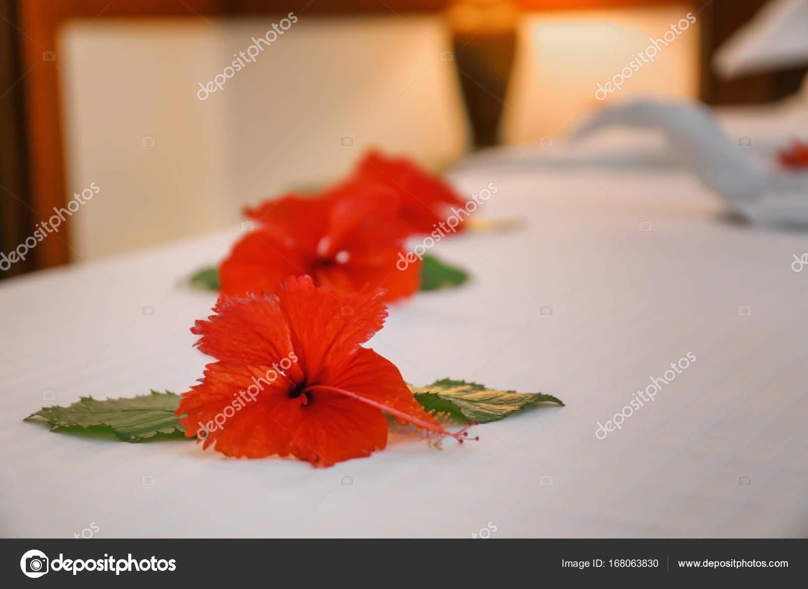 Beautiful flowers on bed in hotel room stock photo belchonock beautiful flowers on bed in hotel room photo by belchonock izmirmasajfo