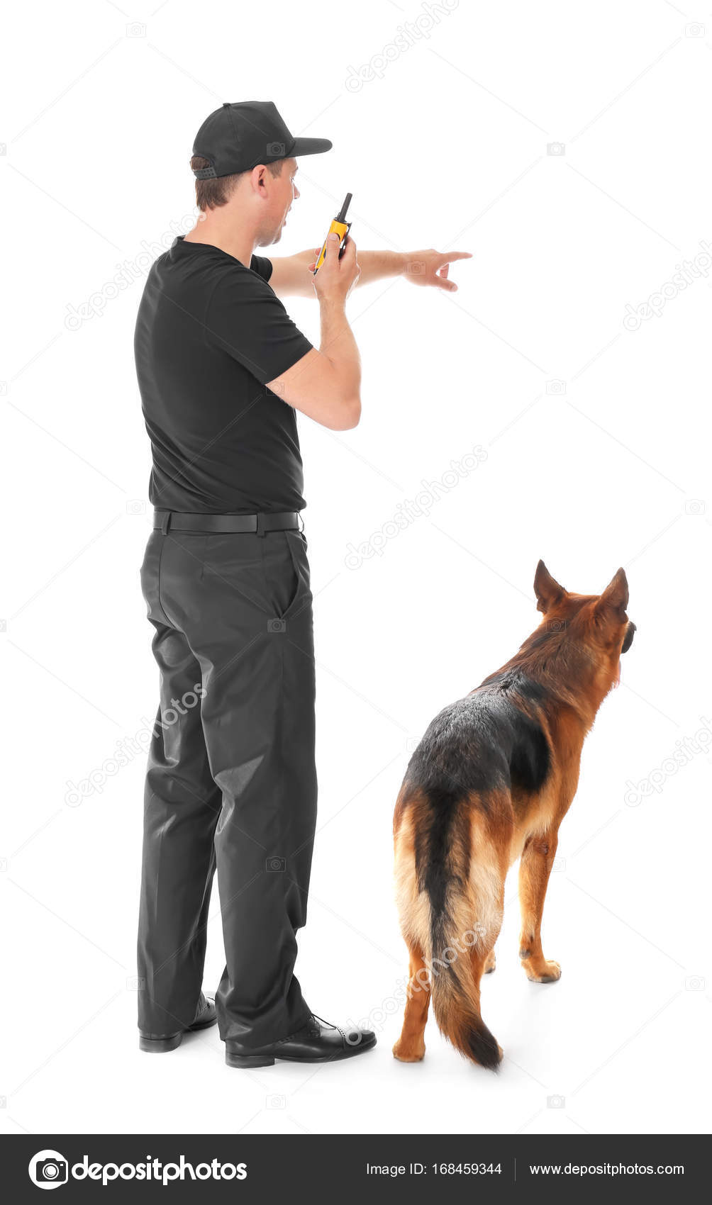 Сторож с собакой картинки