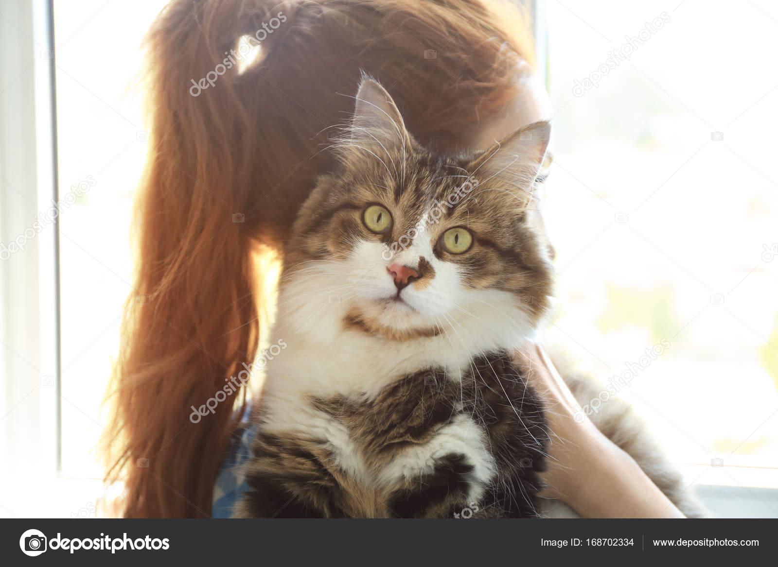 Potřebuji velkou kočičku