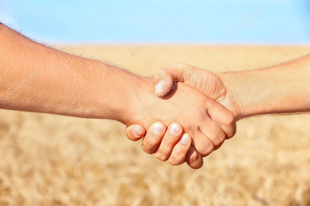 men shaking hands in wheat field