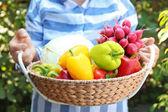 Samice zemědělce drží košík se zeleninou