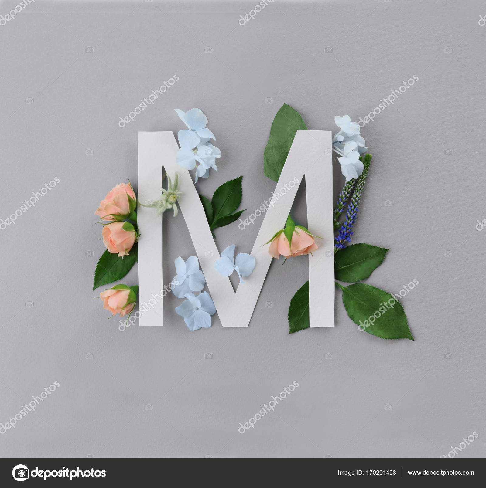 Composition With Letter M And Beautiful Flowers Stock Photo