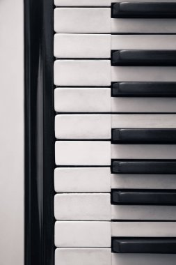 Grand piano keys, closeup