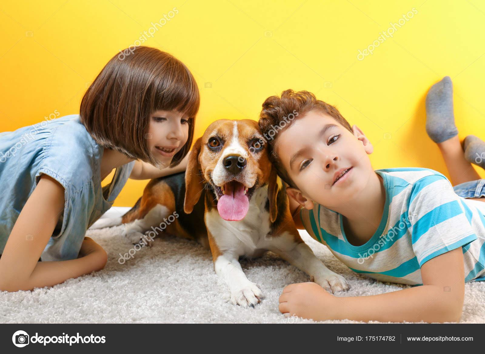 62e6757d828 Χαριτωμένα παιδιά με σκυλί που ξαπλώνει στο χαλί κοντά σε χρώμα τοίχου —  Φωτογραφία Αρχείου