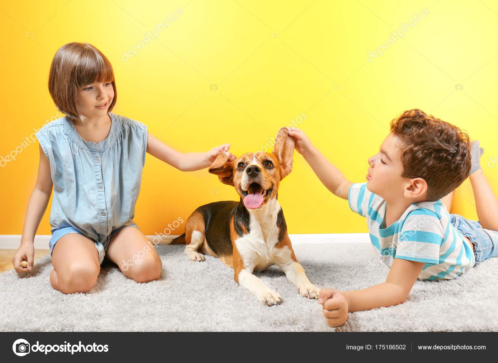 21fc228804f Χαριτωμένα παιδιά παίζει με το σκυλί κοντά σε χρώμα τοίχου — Φωτογραφία  Αρχείου