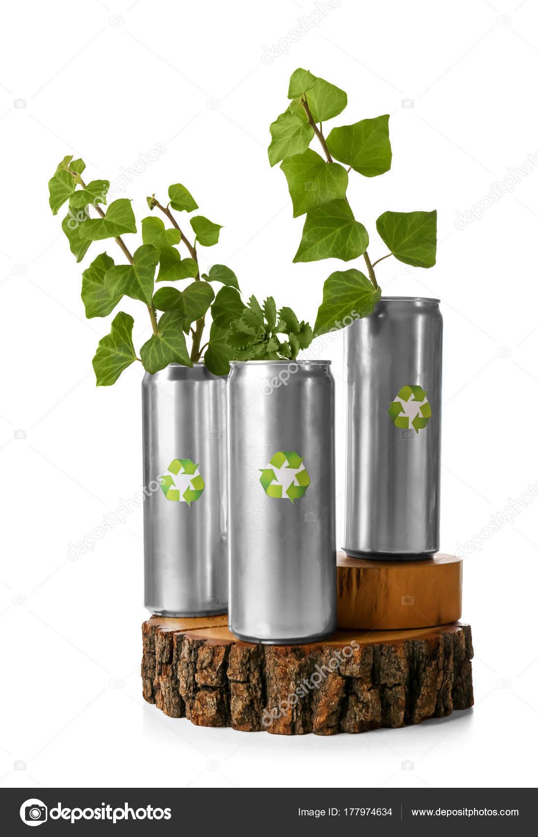 Boites Conserve Avec Les Plantes Sur Fond Blanc Concept Recyclage