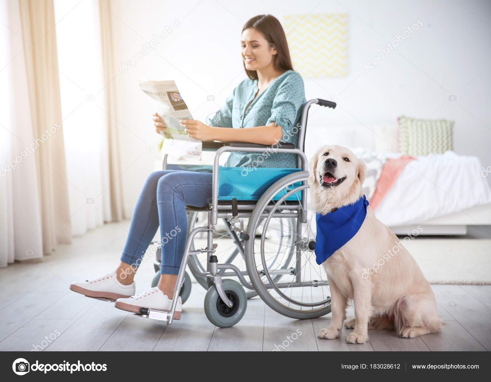 Sedie A Rotelle Leggere : Donna in sedia a rotelle leggendo giornale u foto stock