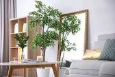 Interiér elegantní pokoje s velkým zrcadlem