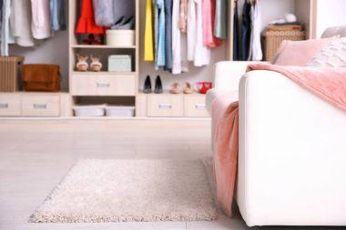Cozy sofa and big wardrobe in dressing room