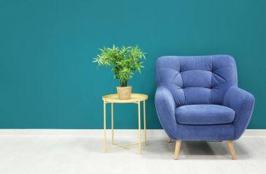 Trendy armchair with table near shaded spruce wall