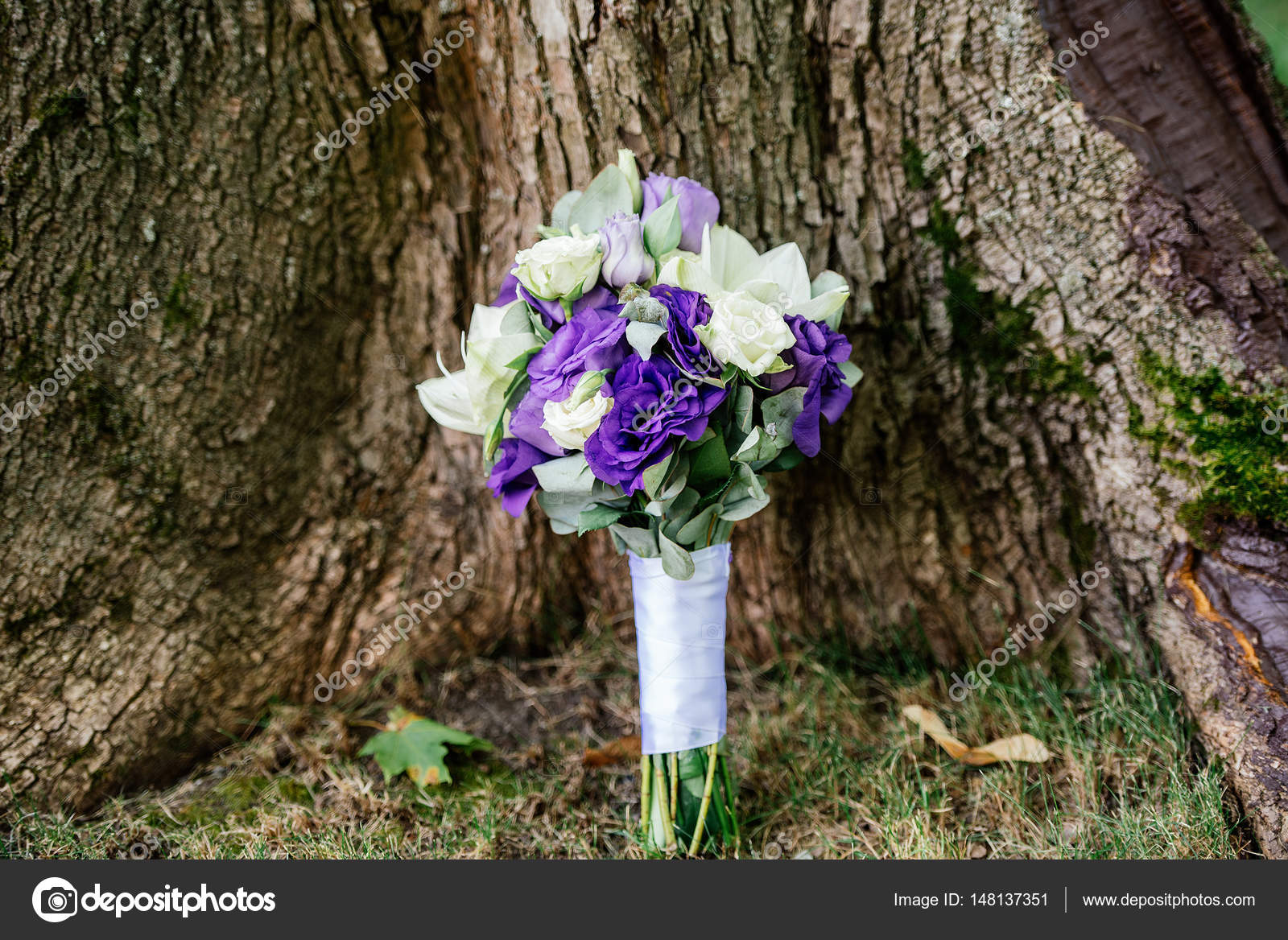 Wedding bouquet of white and purple flowers under the tree stock wedding bouquet of white and purple flowers under the tree stock photo mightylinksfo