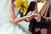 Fotografia Lo sposo indossa anello nuziale al dito della sposa. Sposa e lo sposo indossa anelli reciprocamente. Coppia di nozze cerimonia di matrimonio. Fedi nuziali