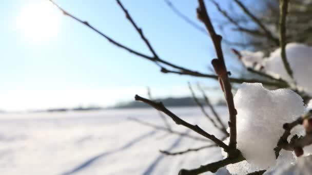 wunderschöne Winterlandschaft in voller HD. alles mit Schnee bedeckt. Europas Winterlandschaft an sonnigen Tagen.