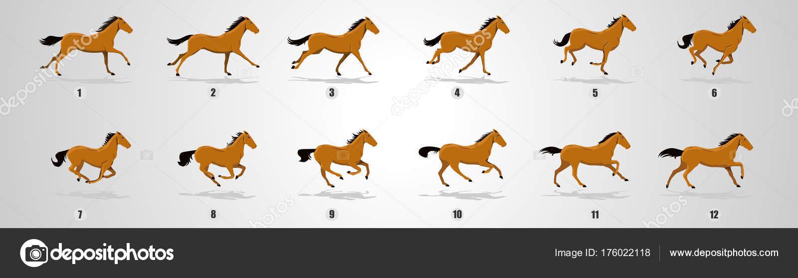 Horse Run Cycle Animation Sprite Sheets Jokey Run Cycle Loop — Stock ... for Animation Horse Running  303mzq