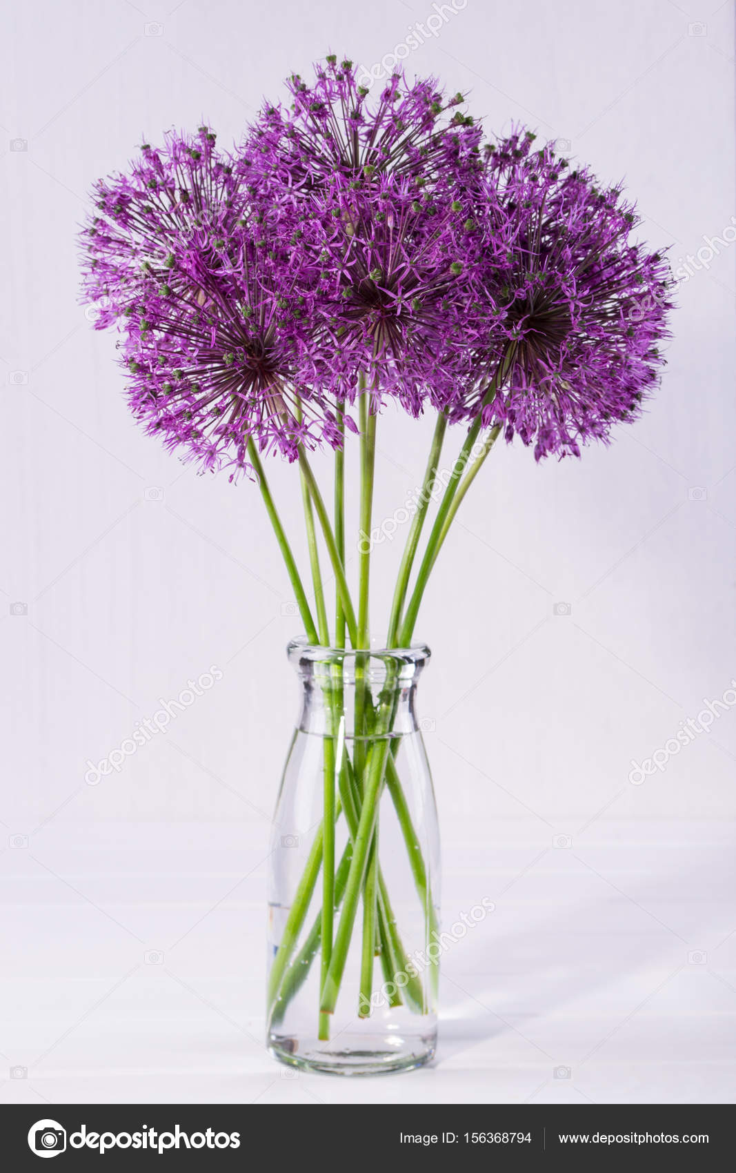 Bouquet di fiori freschi di allium dell 39 orto in vaso di for Vaso di vetro