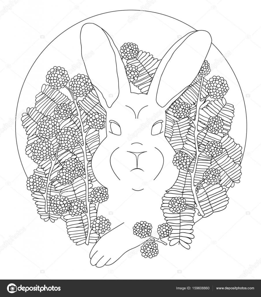 Malvorlagen Kaninchen in Magnolia — Stockvektor © alenkalink #159608860