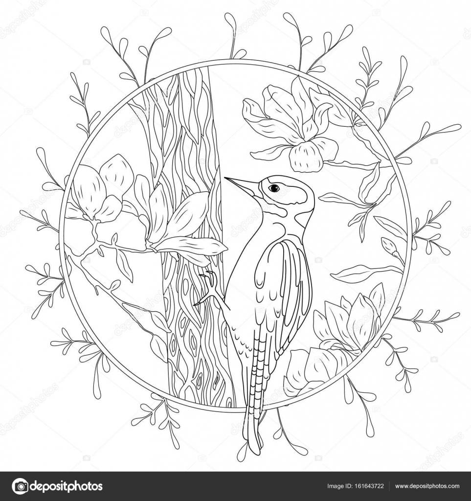 Ağaç Dalı üzerinde Stilize çizgi Film Ağaçkakan Elle çizilmiş Kroki