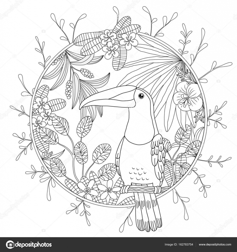 Coloring for adult bird toucan. Exotic tropical plants– stock illustration