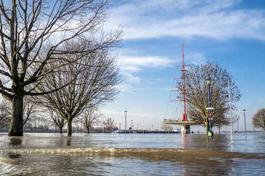 Duisburg , Germany - January 08 2017 : The river Rhine is flooding the Muehlenweide
