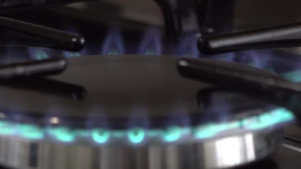 Plynový plamen trouby pro domácnost
