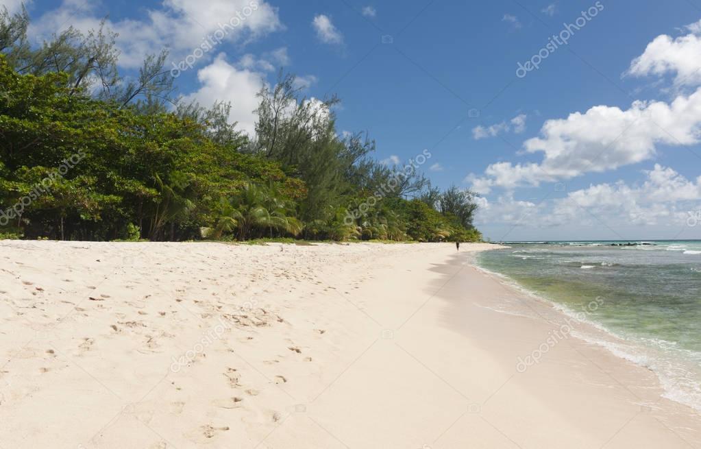 Фотообои Дрель пляже в Барбадосе