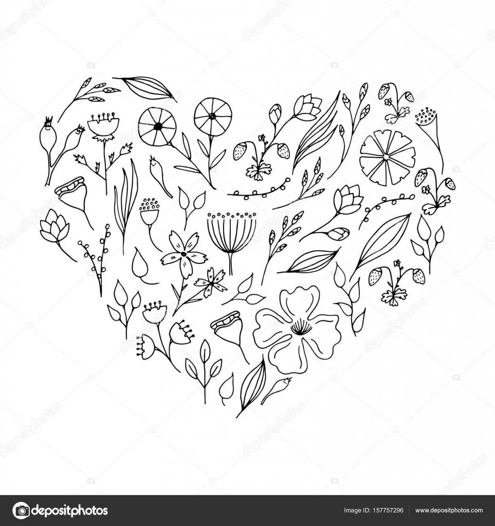 Piante E Fiori Di Doodle Collezione Floreale In Forma Di Udire