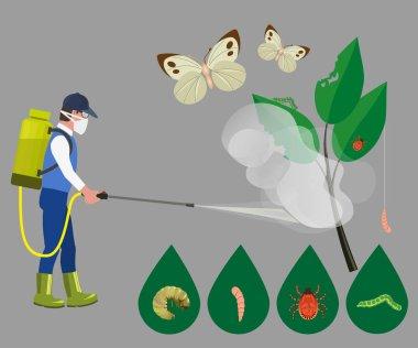 Farmer sprays pesticide