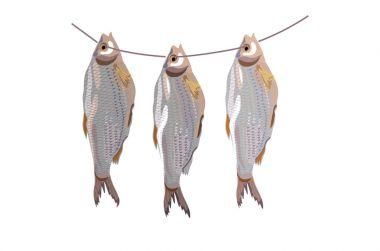 Three dried fish