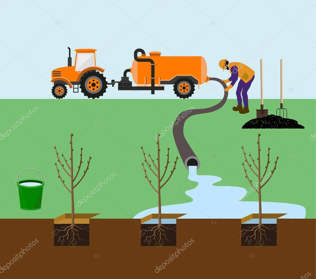 Farmer watering trees