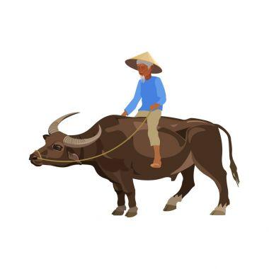 Man riding water buffalo