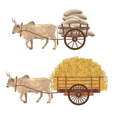 Zebu cart vector