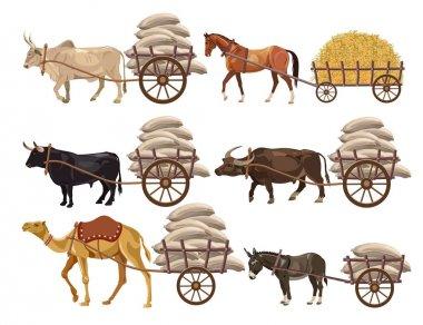 Animal-powered transport