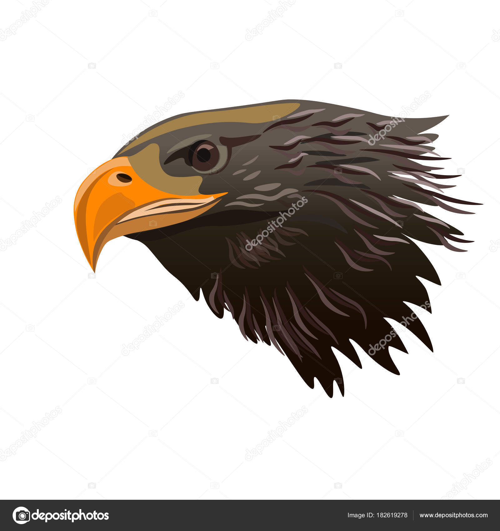 vector de cabeza de águila — Vector de stock © newgena #182619278