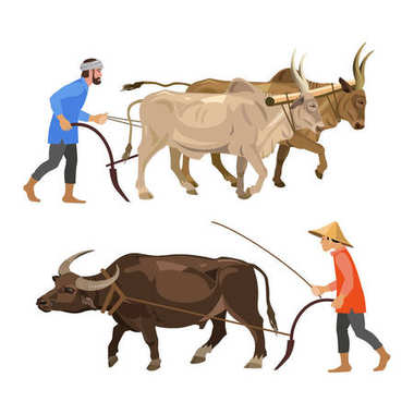 Peasants with oxen.