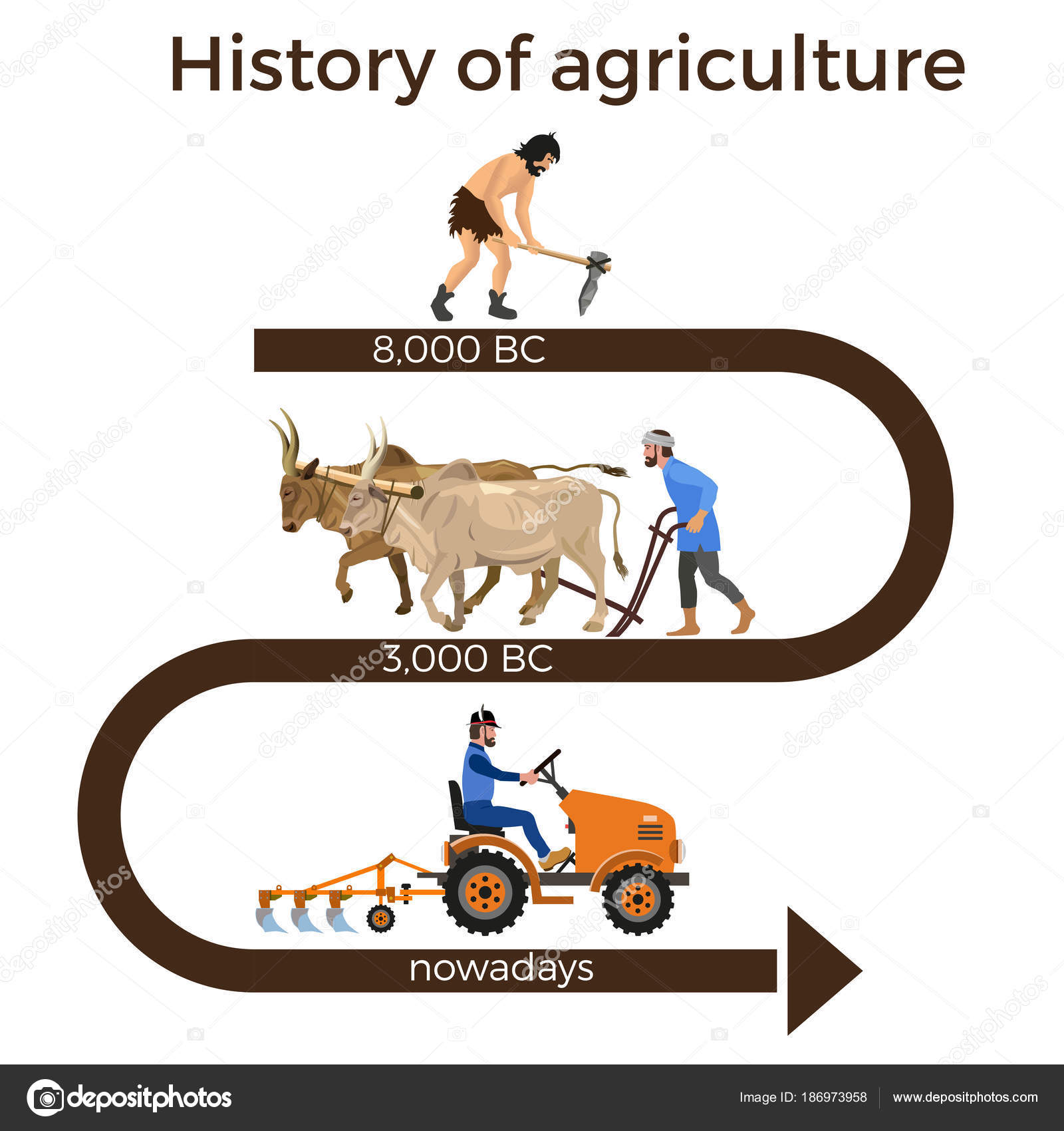 history of agriculture The history of american agriculture (1776-1990) covers the period from the first english settlers to the modern day below are detailed timelines covering farm machinery and technology, transportation, life on the farm, farmers and the land, and crops and livestock.