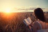Junges Mädchen Lesebuch bei Sonnenuntergang