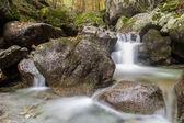 fiume in montagna in autunno